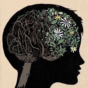 inteligência com idade