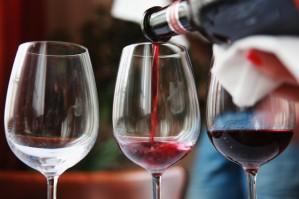 vinhos 17