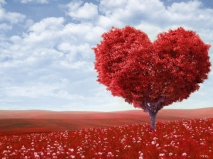 a-arte-de-amar